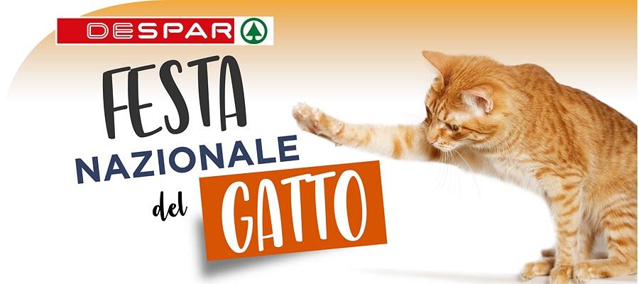 Festa del gatto Despar