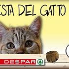 Festa del gatto Despar - Informativa e regolamento